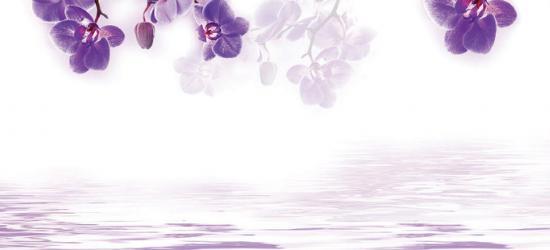 """Стеновая панель """"Орхидеи над водой"""""""