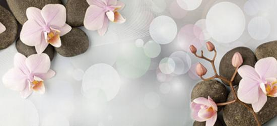 """Стеновая панель с фотопечатью """"Камни и цветы"""""""