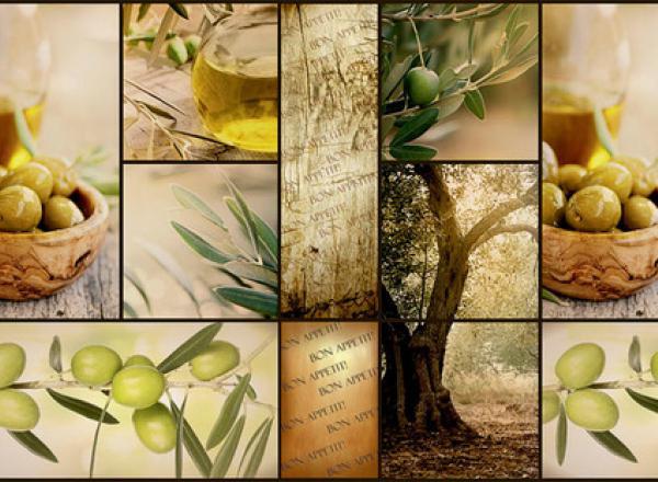"""Стеновая панель с фотопечатью """"Оливковое дерево"""""""