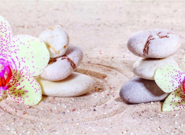 """Стеновая панель  с фотопечатью SP127 """"Цветы на песке"""""""