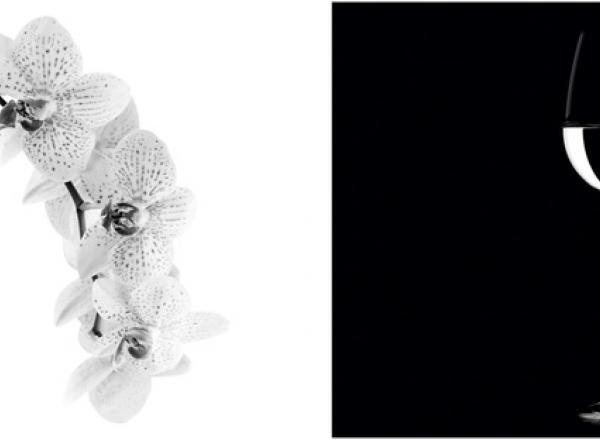 """Стеновая панель с фотопечатью """"Черное и белое"""""""