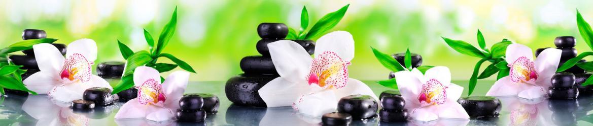 """Стеновая панель с фотопечатью """"Белые орхидеи"""""""
