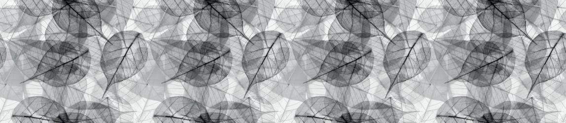 """Стеновая панель с фотопечатью """"Черно-белые листья"""""""