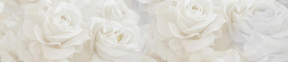 """Стеновая панель """"Белые розы"""""""