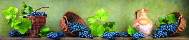 """Стеновая панель с фотопечатью """"Натюрморт с виноградом"""""""