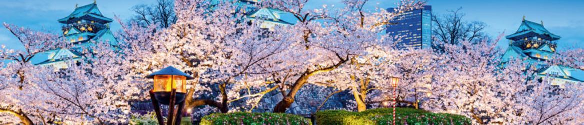"""Стеновая панель  с фотопечатью """"Япония"""""""