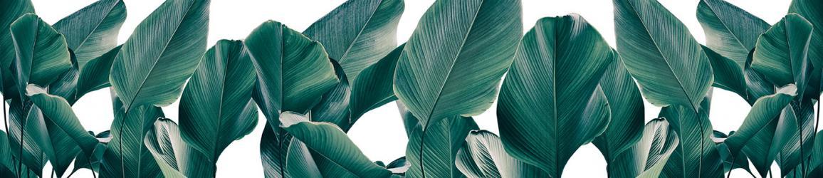 """Стеновая панель с фотопечатью """"Листья"""""""